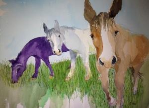 Tinas Horses